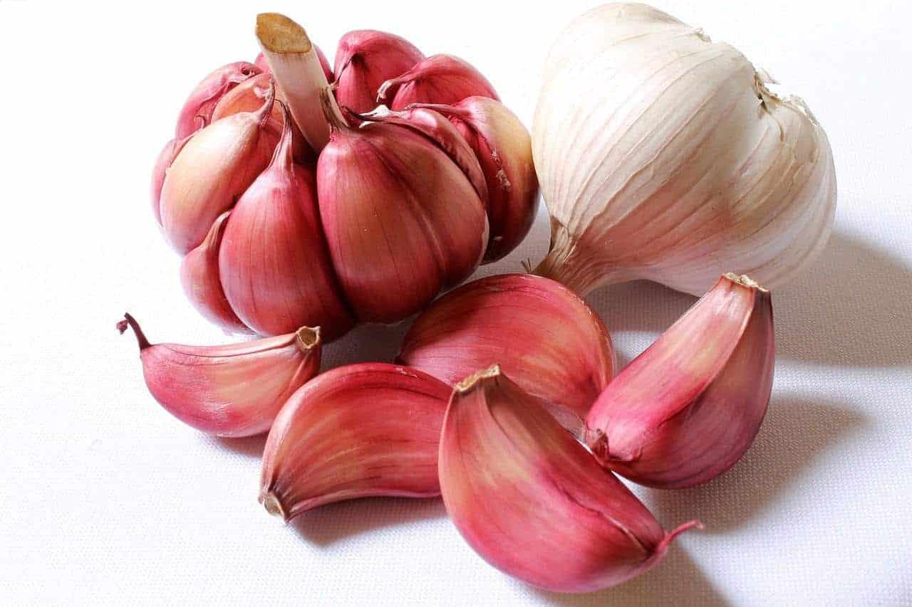 garlic for hair shedding