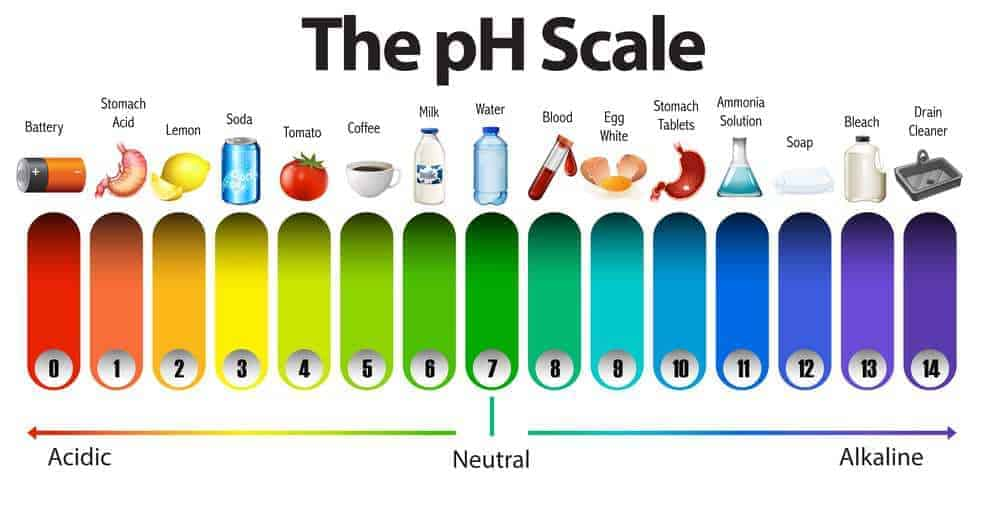 ph scale of shampoo and conditioner