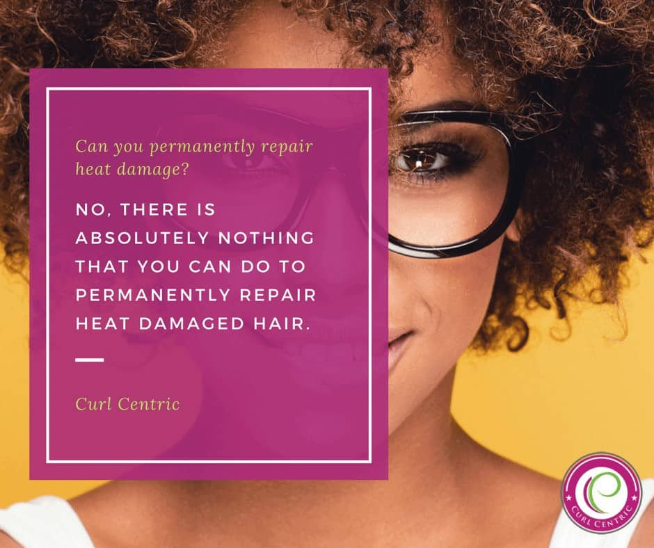 Infographic by Curl Centric that ask the question, can you permanently repair heat damaged hair. It goes on to say that there is absolutely nothing that you can do to permanently repair heat damage hair.